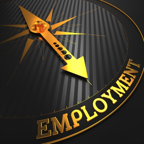 A Journey Through Employment: Lessons Learned And Skills Earned (Pt.2)