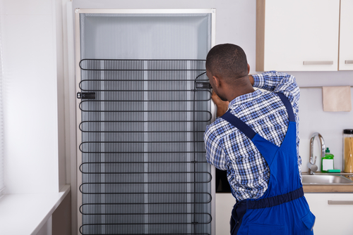 Top fridge repair specialist tips