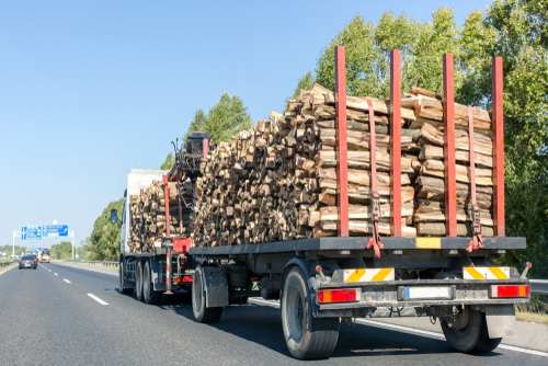 Top firewood delivery supplier tips